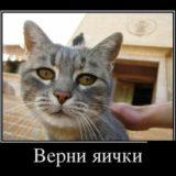 _att_9cddLnehj74_attachment