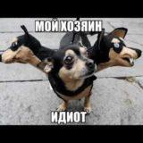 _att_k5ILlYaSq-8_attachment