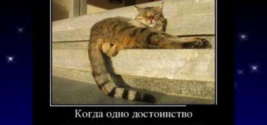 _att_VTi9R2qjxz8_attachment