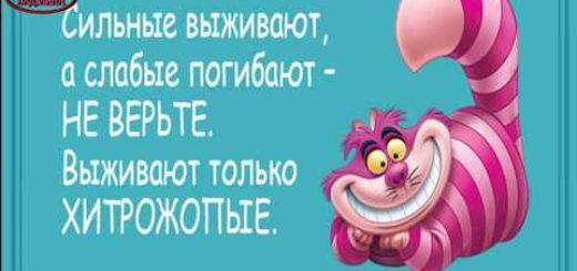 _att_iVko3ZafJlU_attachment