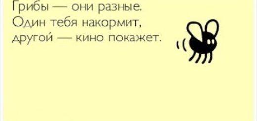 _att_ped7y7Sljyo_attachment